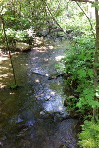 ruisseau_patrimoine_naturel
